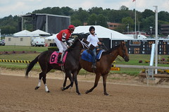 "2013-09-01 (106) r4 Oscar Mancilla on #8 Hye Choose Hope (JLeeFleenor) Tags: photos photography marylandracing marylandhorseracing statefair marylandstatefair jockey جُوكِي ""赛马骑师"" jinete ""競馬騎手"" dżokej jocheu คนขี่ม้าแข่ง jóquei žokej kilparatsastaja rennreiter fantino ""경마 기수"" жокей jokey người horses thoroughbreds equine equestrian cheval cavalo cavallo cavall caballo pferd paard perd hevonen hest hestur cal kon konj beygir capall ceffyl cuddy yarraman faras alogo soos kuda uma pfeerd koin حصان кон 马 häst άλογο סוס घोड़ा 馬 koń лошадь maryland"