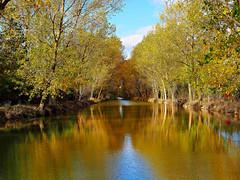 Agua que corres tranquila (Jesus_l) Tags: espaa agua europa valladolid medinaderioseco canaldecastilla jesusl