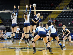 DSC_2347 (K.M. Klemencic) Tags: school lady four high state semi mount varsity final finals volleyball hudson notre dame explorers ohsaa
