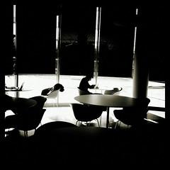 [People and smartphone] (Luca Napoli [lucanapoli.altervista.org]) Tags: blackandwhite milan android androids lucanapoli peopleandsmartphone ipphonography sonysperias