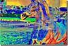 A STALION- 21 (jawadn_99) Tags: blue red horses horse favorite white black art animal poster photography fantastic flickr gulf superb vivid scout explore arab contacts kuwait arabian activity simply photoart app raising galope vividimagination supershot stalion magicunicornverybest mygearandmebronze horses22 rememberthatmomentlevel1 interrestigness jawadn99