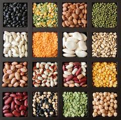 Legumes (Karen_Chappell) Tags: red food orange white black green square beans healthy colours peas tray colourful lentils legumes kidneybean blackeyedpeas splitpea blackeyedbeans limabean