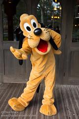 Pluto (Regular)