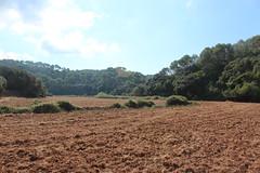Camí de Cavalls, Menorca