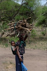 10071663 (wolfgangkaehler) Tags: africa people woman tanzania person african firewood carrying lakemanyara eastafrica eastafrican tanzanian environmentalimpact tanzaniaafrica environmentalissue lakemanyaratanzania environmentalconcern {vision}:{outdoor}=0981