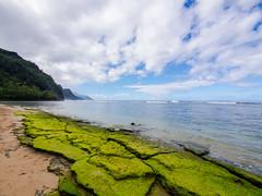 2103889_RAW (Mr Inky) Tags: hawaii kauai hanalei keebeach napalicoast haenastatepark panasonic714mmf4 olympusem5