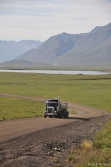 Dalton Highway, north slope (3)
