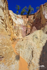 Providence Canyon (Seth Berry Photography) Tags: statepark park usa georgia floor state little south small bottom grand canyon hike east providence erosion soil clay land southeast providencecanyon littlegrandcanyon providencecanyonstatepark sethberryphotography