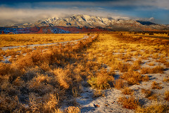 Winter Gold (Jeff Clow) Tags: winter mountains newmexico landscape seasons jeffrclow nikond800 jeffclowphototours