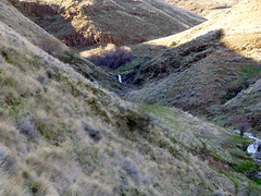Imnaha River Overnighter (Doug Goodenough) Tags: bryce jen scott sadie river bike bicycle gravel grinder ride pedals spokes camping spring 2014 14 march canyons oregon drg53114imcamp1 drg53114p drg531
