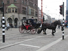 Paardenkoets Amsterdam Dam (Arthur-A) Tags: horse netherlands amsterdam carriage nederland paard horsecarriage paardenkoets