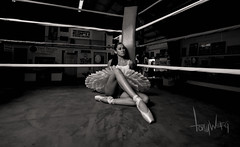 Ballerina in a boxing ring (Tony Weeg Photography) Tags: lighting street ballet white black photography nikon ballerina box main dramatic tony boxer boxing chandler gym d600 weeg tonyweegphotography
