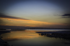 Die Elbe (1 von 1) (Andy van Dyk) Tags: colorsinourworld elbe fluss norddeutschland blauestunde abend dyk