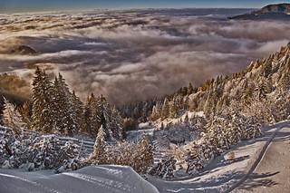 Swiss winter paradise, Paradis hivérnale suisse ,  Les Rochers de Nays . Canton of Vaud. No. 6466.