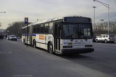 Neoplan An460 (ExactoCreation) Tags: neoplan bee lines bus diesel artic