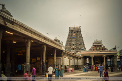 Kapaleeswarar Temple (1) (Pugalenthi Iniabarathi) Tags: city temple evening madras citylife devotion devotional chennai mylapore kapaleeswarartemple d3200 nammachennai pugalenthi mycitychennai mychennai ithunammachennai