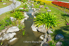 Harry_09988,,,,,,,,,,,,,,,,,,,, (HarryTaiwan) Tags: taiwan    d800                    harryhuang     hgf78354ms35hinetnet