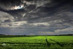 La revanche (photosenvrac) Tags: nature photo culture ciel nuages beauce thierryduchamp