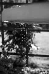 Gravity (photographybyjoss ↟↟) Tags: water canon sweden bokeh gravity eden sverige waterdrops södermanland canoneos5dmarkii liquidbokeh sköldinge