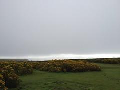 Misty Skokholm (Katie Fuller @bogbumper) Tags: wales island cymru pembrokeshire skokholm ynyssgogwm skokholmbirdobservatory