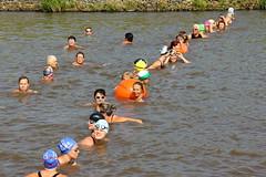 Reitdieptochten Garnwerd 2013 238 (AWJ Hefting) Tags: swimming reitdiep garnwerd zwemmen reitdieptochten
