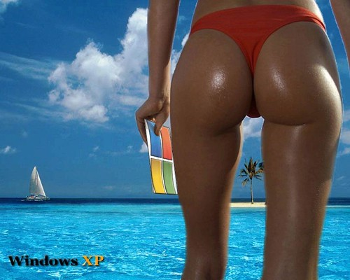 Windows_XP5