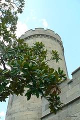 Крым, Алупка, Воронцовский дворец