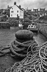 "St Abbs harbour • <a style=""font-size:0.8em;"" href=""http://www.flickr.com/photos/24720920@N04/12195372444/"" target=""_blank"">View on Flickr</a>"