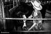 cowboy (khalidhameed0110) Tags: boy blackandwhite cow blackwhite cattle statefair fujifilm blackandwhitephotography floridastatefair littlecowboy x100s