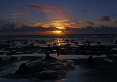 Sunset over the Petrified Forest (John Ibbotson (catching up!)) Tags: wood sunset sea sun wales forest coast seaside ceredigion borth petrified