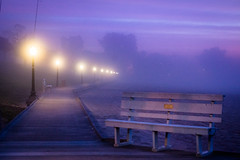 Misty Morning Boardwalk