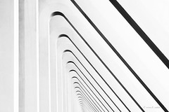 Endless (mimo b. rokket) Tags: monochrom monochrome schwarzweis schwarzundweis blackandwhite bw sw geometrie geometry curves lines linien liège luik belgien belgie belgique santiagocalatrava calatrava lüttich railwaystation liègeguillemins diagonale diagonal abstractarchitecture abstraktearchitektur modernearchitektur modernarchitecture abstract abstrakt