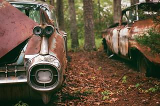 Abandoned Junkyard, 35mm film