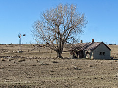 Way out Yonder (RootsRunDeep) Tags: windmill home house old decay abandoned windmillwednesday wyoming