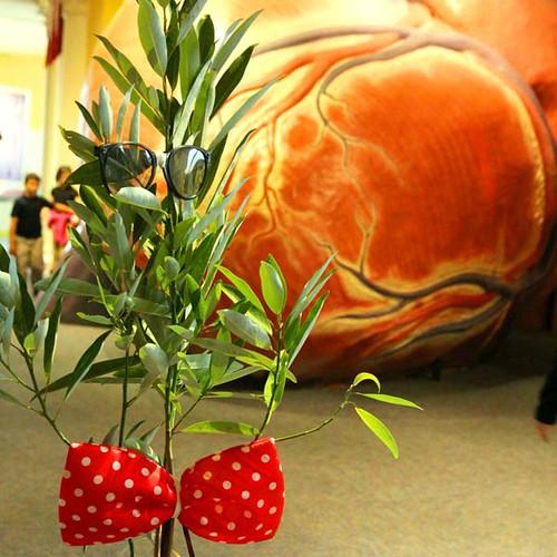 TREE-25188 tree giveaway franklininstitute_crop