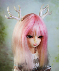 commissioned antlers (Sparrow ♪) Tags: sparrows shop sparrowsshop anlters msd minifee luka eight point white pearls 8