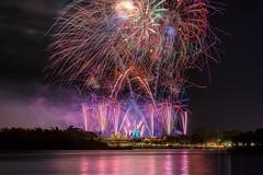DVC Fireworks (MattStemerman) Tags: fireworks d750 disneyworld waltdisneyworld disney magickingdom dvc wdw cinderellacastle nikon