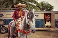 El Charro (dusk ver.) (Conor F. Shine) Tags: horse public cool uncool cincodemayo charro charreria cool5 cool3 cool6 cool4 cool7 iceboxcool