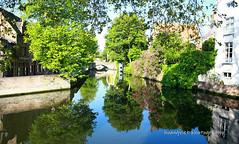 Brugge (Hoang Viet) Tags: morning venice lake reflection water landscape canal europe european belgium euro brugge culture eu bruges belgian venise capitalofculture lavenisedunord