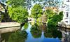 Brugge (Hoang Viet Photography) Tags: morning venice lake reflection water landscape canal europe european belgium euro brugge culture eu bruges belgian venise capitalofculture lavenisedunord