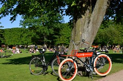 Sunshine and bikes in the Royal Garden