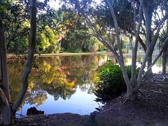 20130618_171456fr (Mangiwau) Tags: park lake reflection water creek mirror waterfall still stream image country north national queensland granite cairns far davies refleksi fnq mareeba