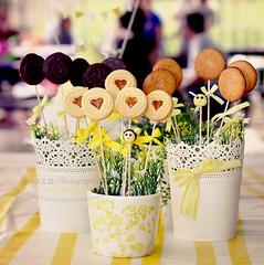Dulces detalles (Sol Z.B.) Tags: stilllife cookies dof bokeh bees sweets cumpleaos birthdat dulces macetas galletas onthetable decoracin jardineras alimentos sobrelamesa abejitas