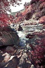 Alcantara (ninofuzze) Tags: water canon river landscape fiume 1ds rocce acqua paesaggio messina alcantara cascate gole 1635l irfilter lanscpe ninofuzze