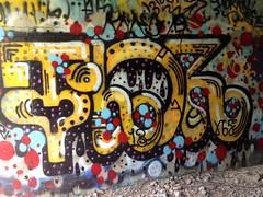 Thor (Franny McGraff) Tags: graffiti san diego thor vts