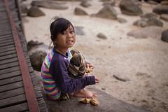feeding chickens (Maksim Million) Tags: thailand sigma koh tao t3i 30mm 600d