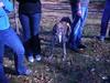 WorldsEnd11-20-2011019
