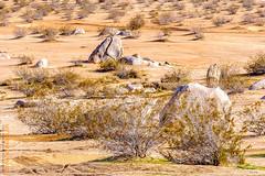 Trona (Edi Bähler) Tags: california usa plant landscape unitedstates pflanze deathvalley landschaft ferien kalifornien ridgecrest deathvalleynationalpark vereinigtestaaten 70200mmf28 landscapeusa nikond3
