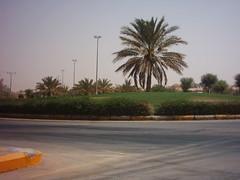 IMG_2470 (abuasem) Tags: ميدان دوار النخلة البصر تقاطع ثيل