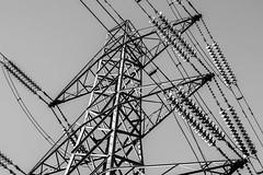 The Grid (d:w) Tags: power pylon nationalgrid denhamcountrypark